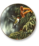 Collectible Plates - Summer Hummingbirds