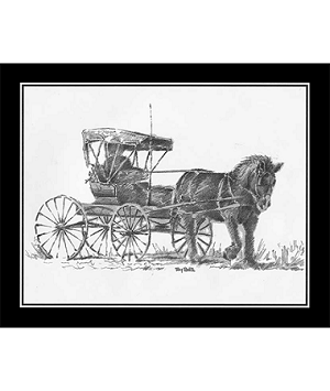 Pencil Sketch - Horse and Buggy